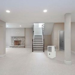 buy a dehumidifier: placement location matters