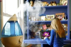 humidifier benefits, you should take care of your humidifier to enjoy the benefits for years