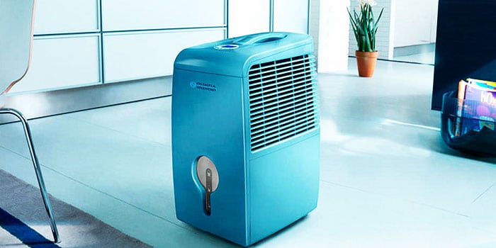 How to Know if You Need A Home Dehumidifier: Check Out These 5 Factors!