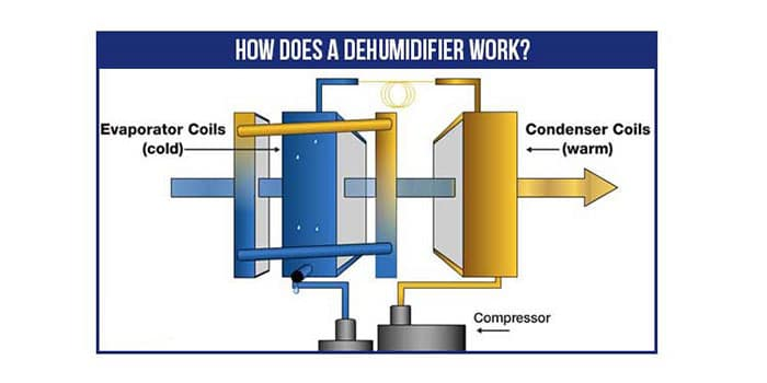 Don't Know How Does a Dehumidifier Work? Read on!