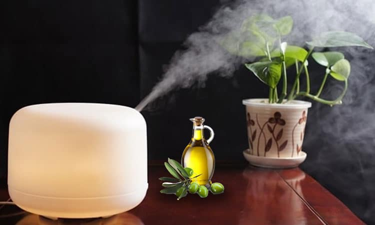 Still Want to Use Essential Oils in Humidifier? Consider These Things –