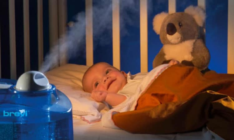 How Can a Humidifier Improve Your Health? Check This Out!