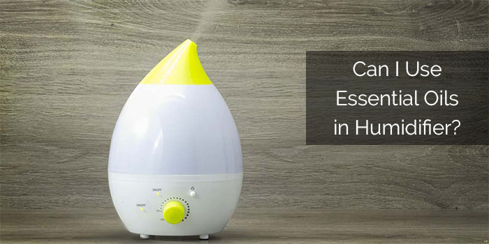 Can I Use Essential Oils in Humidifier? – Read This Before Using