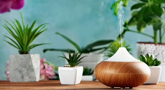 What Is an Oil Diffuser?
