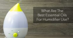 essential oils in humidifier; make your choice carefully