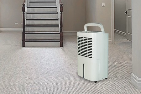 dehumidifier for basement