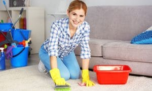 Bye-Bye Vacuum! Here's How to Clean a Carpet Without One