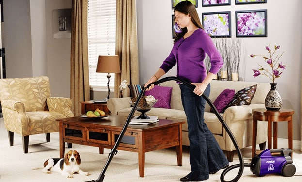 12 Salutary Tips for Vacuuming Pet Hair