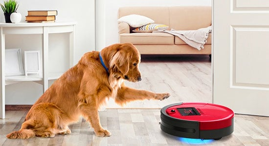 Make the Vacuum More Familiar:
